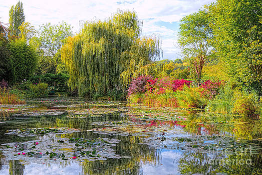 Chasing Monet by Olivier Le Queinec