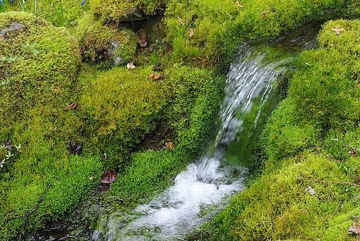 Marilyn Wilson - Chasing Waterfalls