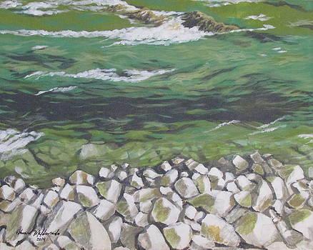 Chattahoochee Riverbank by Edward Maldonado