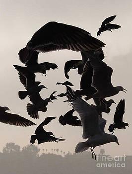 Che by Bijan Masoumpanah