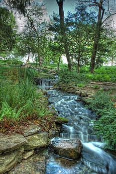 Cheekwood Creek by Zachary Cox