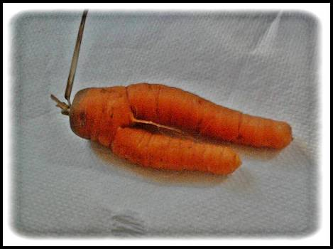 Cheeky Carrot by Geoff Cooper