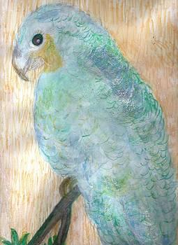 Anne-Elizabeth Whiteway - Cheerful Blue Parrot