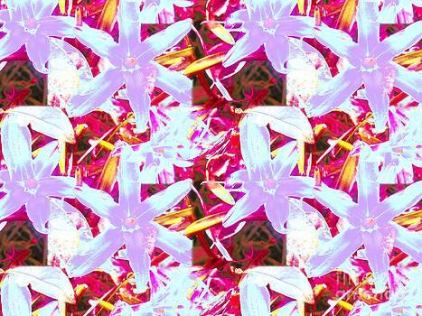 Cheerful flowers in magenta by Dana Hermanova