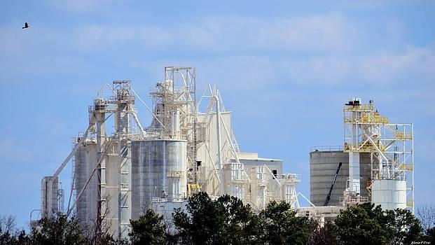 Maria Urso  - Chemical Lime Plant