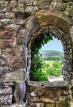 Chepstow Castle View by Skye Ryan-Evans