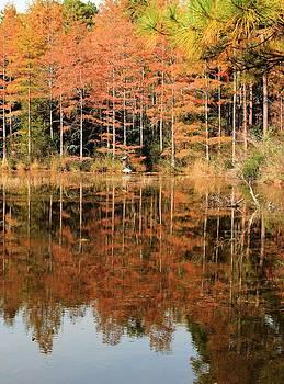 Cheraw State Park by Sandi Blood