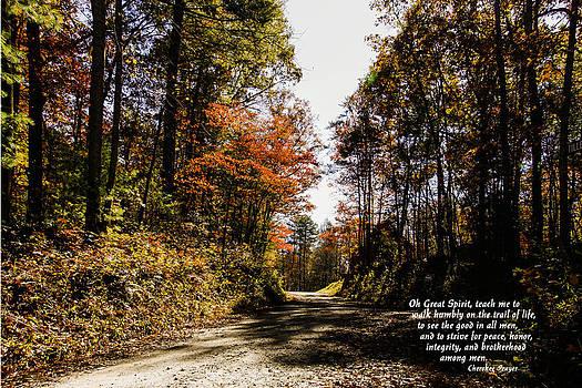 Cherokee Trail by Marilyn Carlyle Greiner