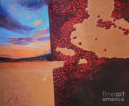 Cherries  by Arturas Braziunas
