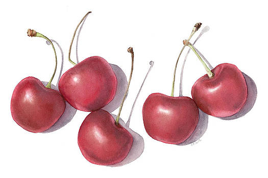 Cherries by Elizabeth Smith