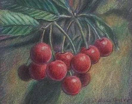 Cherries by Melissa Taylor