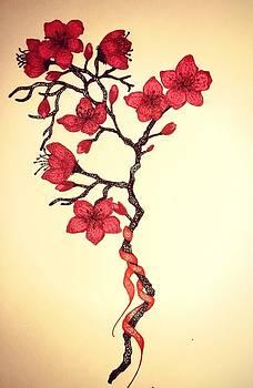 Cherry Blossom by Amanda Copenhaver