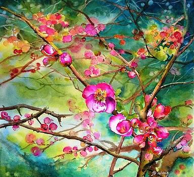 Betty M M   Wong - Cherry blossom