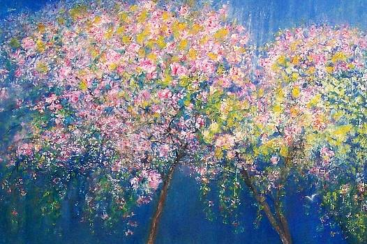 Shan Ungar - Cherry Blossom Branches