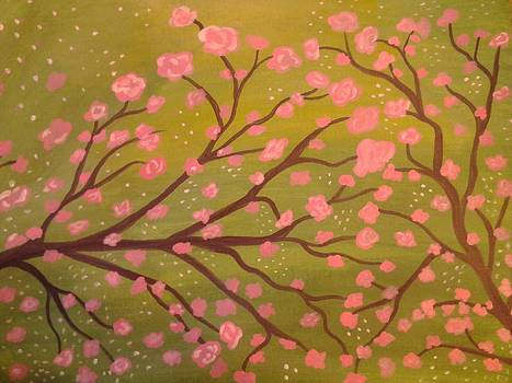 Cherry Blossoms by Erica  Darknell