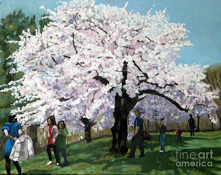 Cherry Blossoms  No 2 by Joan McGivney