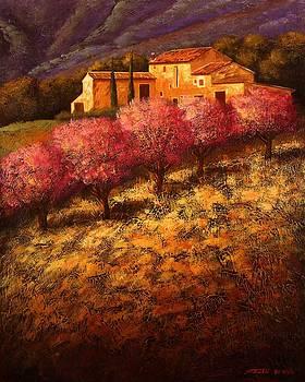 Cherry Blossoms by Santo De Vita