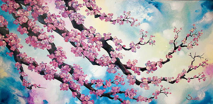 Cherry Blossoms by Shiela Gosselin