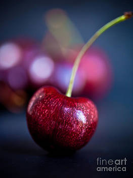 Cherry Portrait by Patricia Bainter