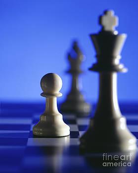 Chess pieces by Tony Cordoza