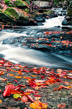 Edward Fielding - Chesterfield Gorge New Hampshire