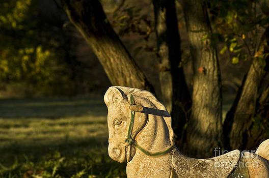 Valerie Fuqua - Chestnut Horse