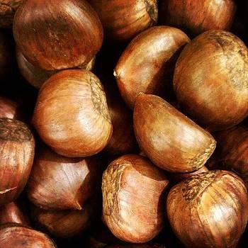 Chestnuts #christmas by Malcolm Van Atta III