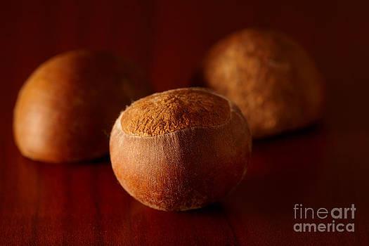 Chestnuts by Monika Wisniewska
