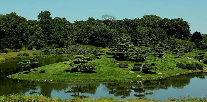 Rosanne Jordan - Chicago Botanical Gardens Japanese Garden View