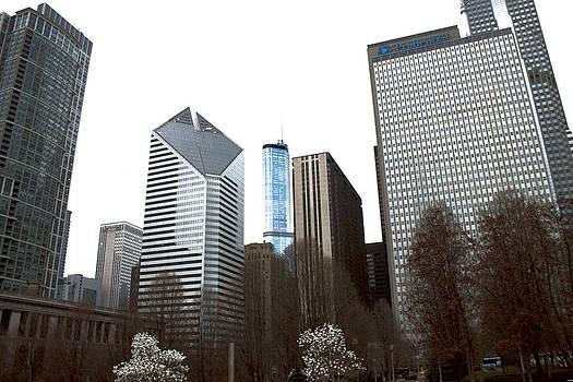 Barbara Giordano - Chicago Cityscape