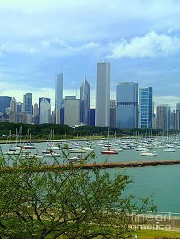Chicago skyline by Crystal Miller