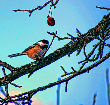 Joe Bledsoe - Chickadee at Rest