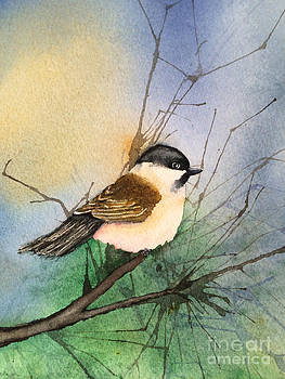 Chickadee  by Donlyn Arbuthnot