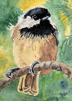 Chickadee by Jan Gibson