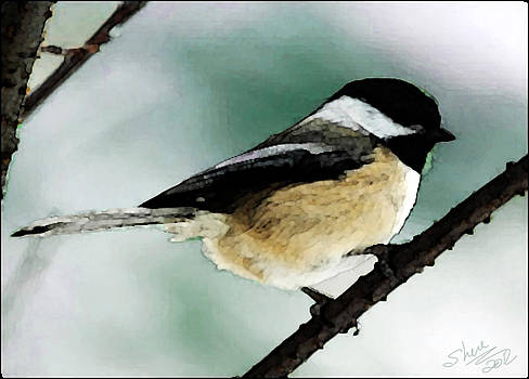 Shere Crossman - Chickadee