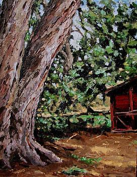 Chicken Coop at Hidden Valley by Les Herman