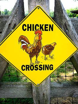 Chicken Crossing by Dulce Levitz