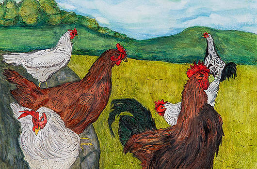 Chicken Flock by Sandee Johnson