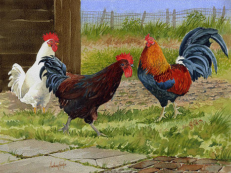 Anthony Forster - Chickens of Fair Oaks