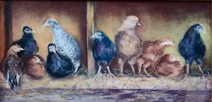 Chicks In The Coop by Joan Wulff
