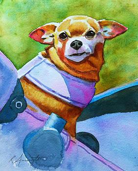 Chihuahua in Stroller by Rachel Armington