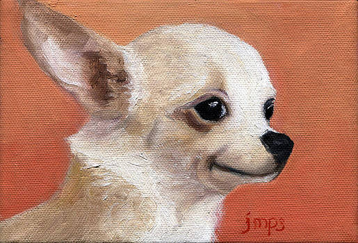 Chihuahua by Jean  Smith