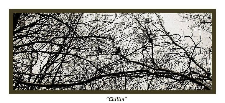 Chillin by James  Lalepop Becker