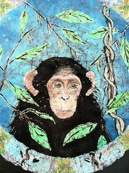 Chimp by Jill Tsikerdanos