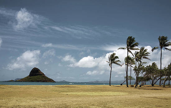 Chinaman's Hat Island by Joanna Madloch