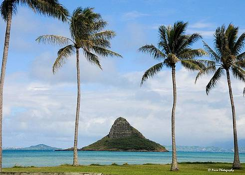 Chinaman's Hat - Oahu Hawai'i by Ken Arcia