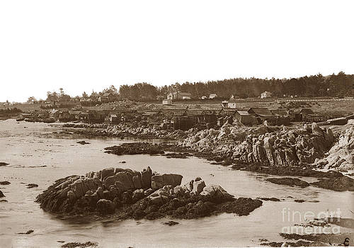 California Views Mr Pat Hathaway Archives - Chinese Fishing Village Pacific Grove California  Circa 1898