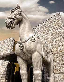 Gregory Dyer - Chinese Horse - 01