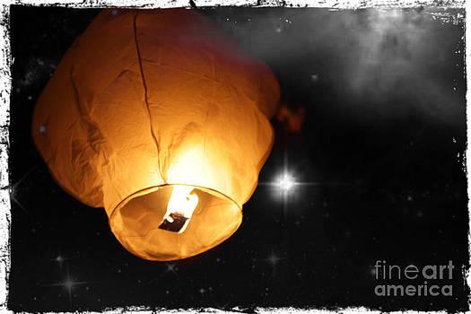 Sophie Vigneault - Chinese Lantern