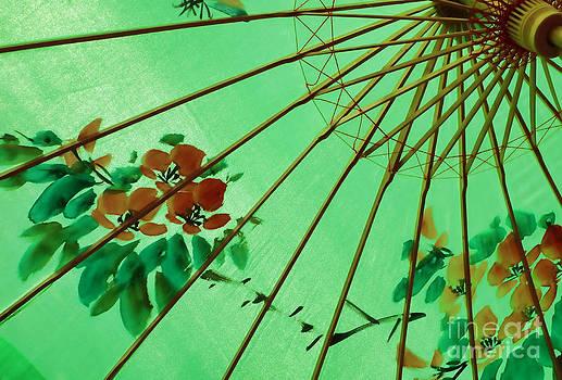 Chinese Parasol by Nora Martinez